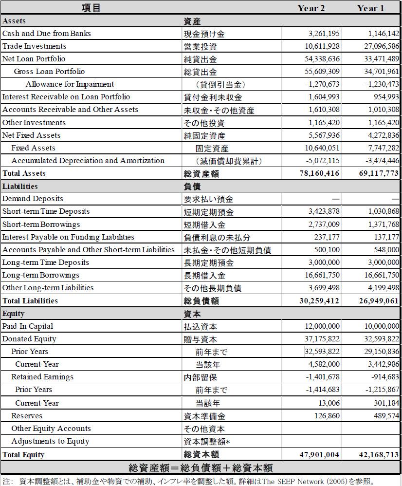 別添1 MF機関の財務諸表の例 表B:貸借対照表の例