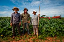 Oikocredit partner Norandino, Peru